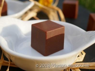 cube de chocolat13