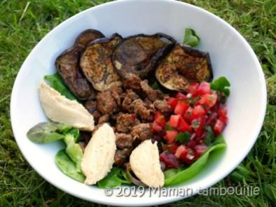 assiette boeuf houmous tomates17