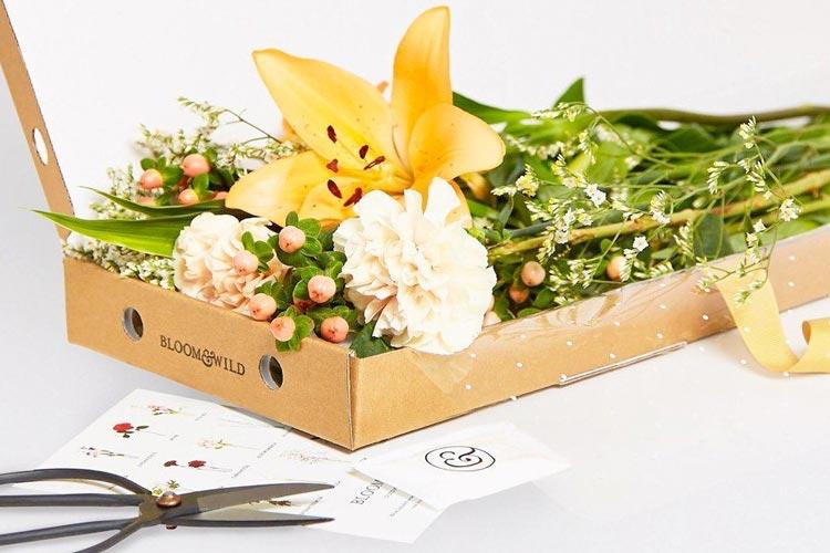 Sheroes_Gift_Guide_BloomWild_via_Mamnushkablog