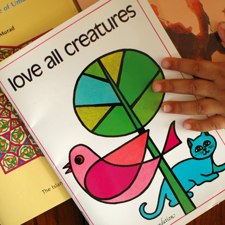 Can't Keep Our Hands Off The Retro Illustrations || Muslim Storybooks For Slightly Older Kids ||Mamanushka.com