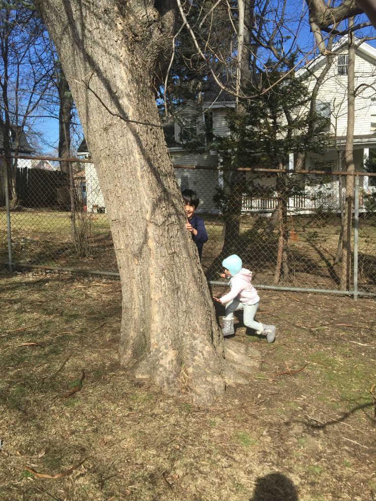playin-tree-via-mamanushka-blog