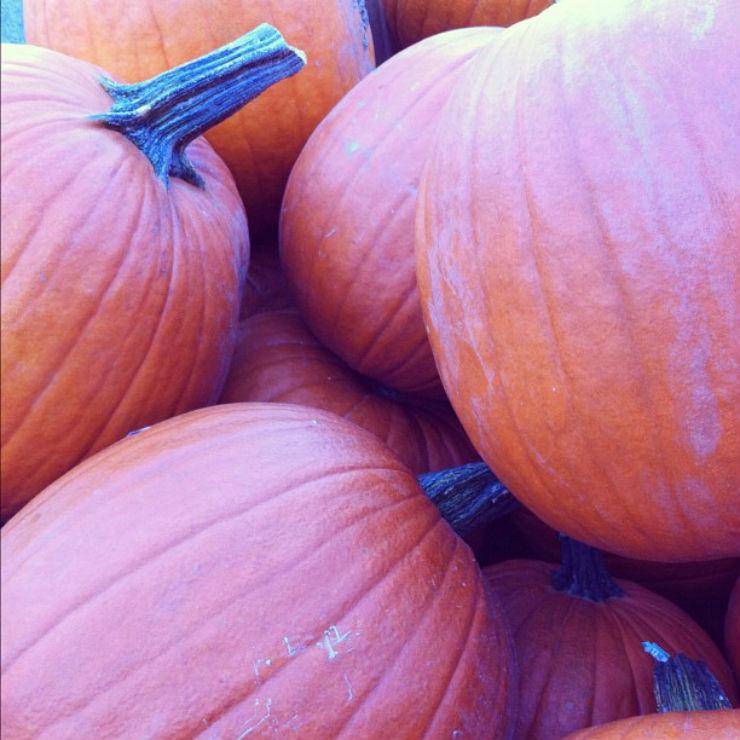 fall-autumn-pumpkin-light-via-mamanushka-blog