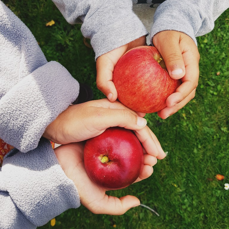 MAMANUSHKA.com || Best Apple Cake Recipe || No Mixer || Quick || Easy || Delicious || Apple Picking