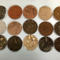 A Lesson Using Soil To Celebrate The Skin We're In