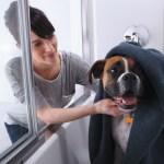 Three Ways Soft Track Shower Doors Make Mom's Life Easier
