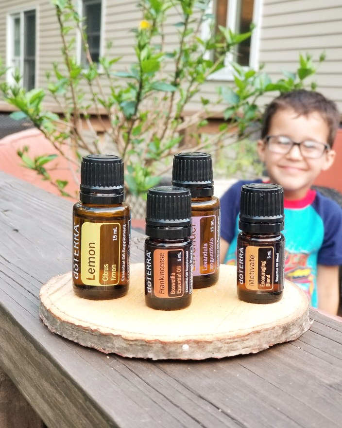 Mama of Both Worlds: Essential Oils rid our house of toxins