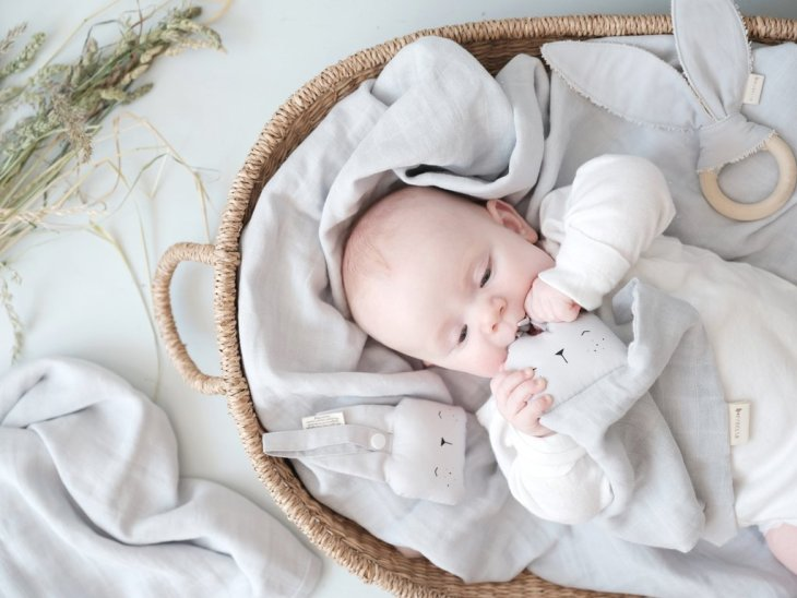 zastititi bebu od komaraca