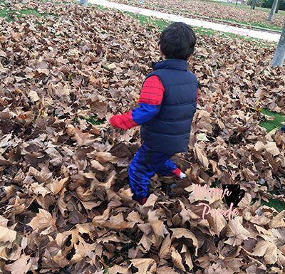 jugar con las hojas es una actividad tipica del otoño
