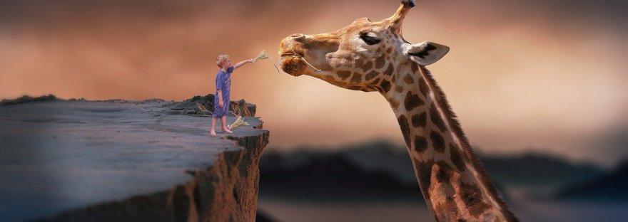 La jirafa es metáfora de la comunicación no violenta