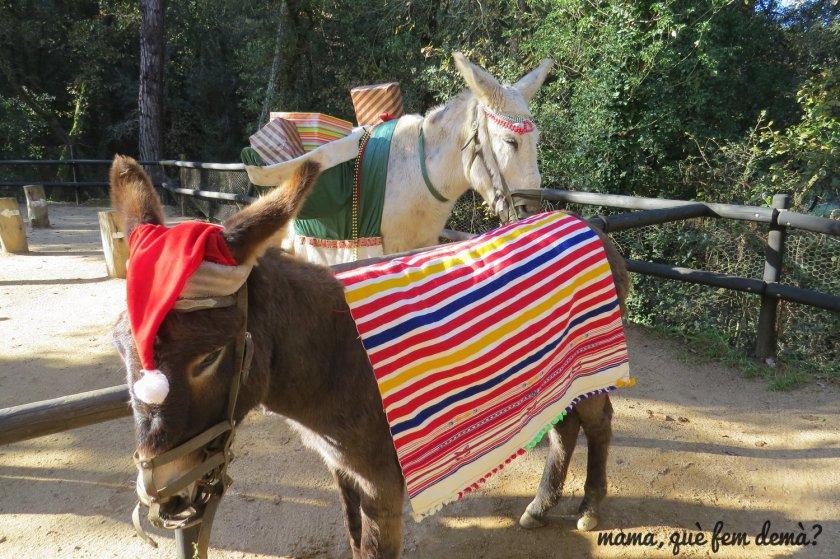 dos burros disfrazados con gorros de papa noel y con regalos en las alforjas