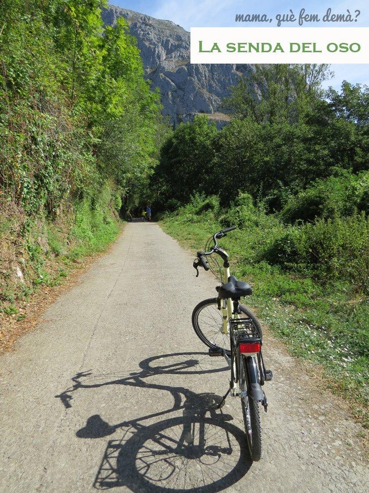 Bicicleta en la Senda del Oso de Asturias