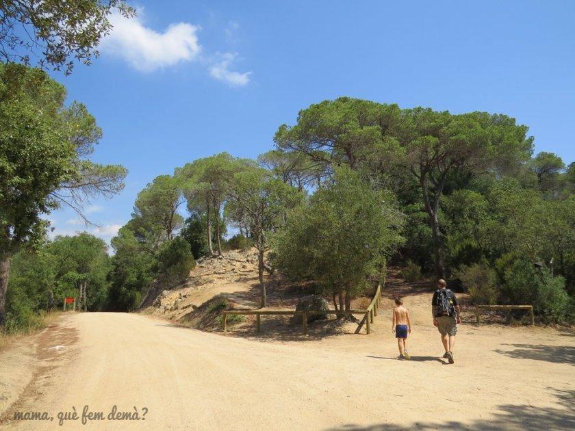 dolmenpedragentil13