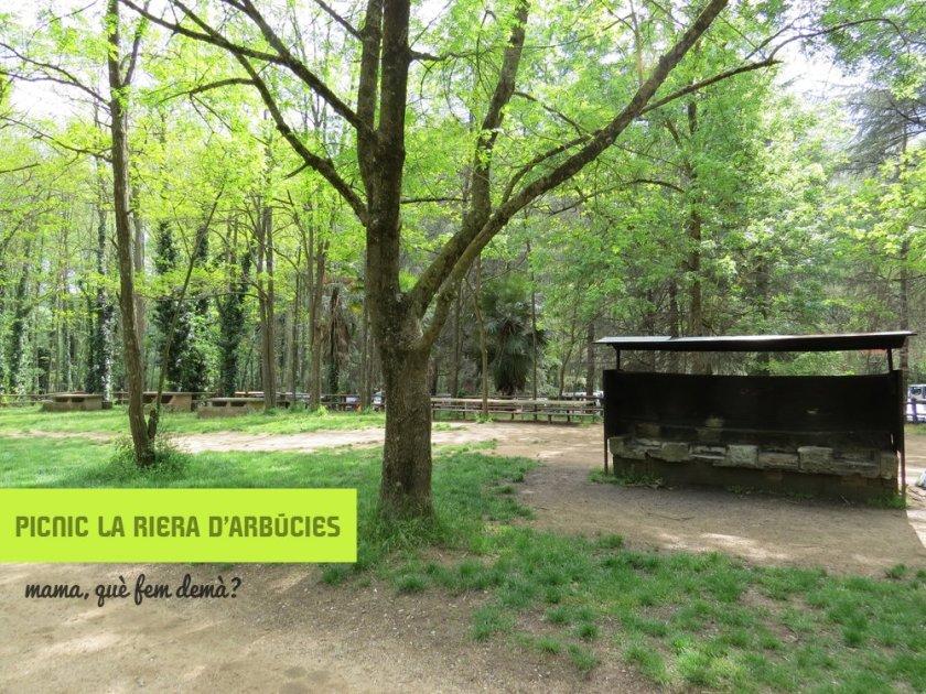 barbacoas en el Picnic La Riera d'Arbúcies