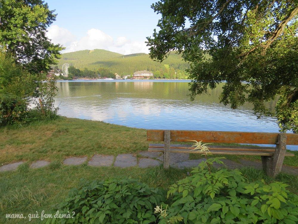 lago Titisee desde el parque