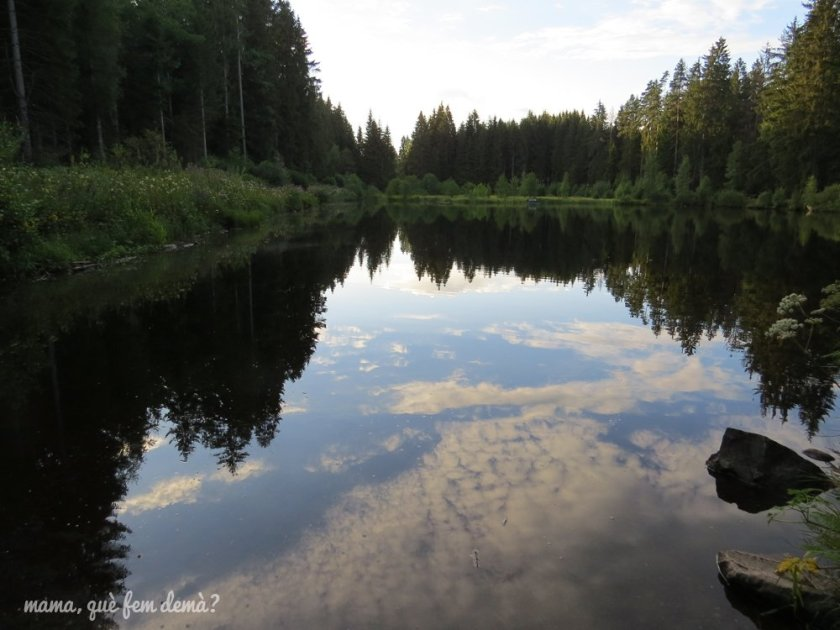 lago Eisweiher en Titisee