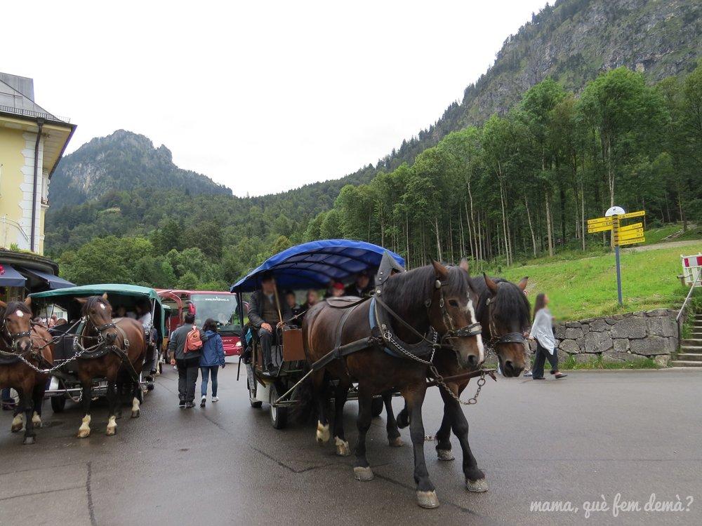 coche de caballos que lleva al castillo del rey loco
