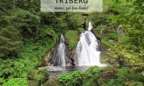 Las cascadas de Triberg, relojes de cuco y tarta Selva Negra