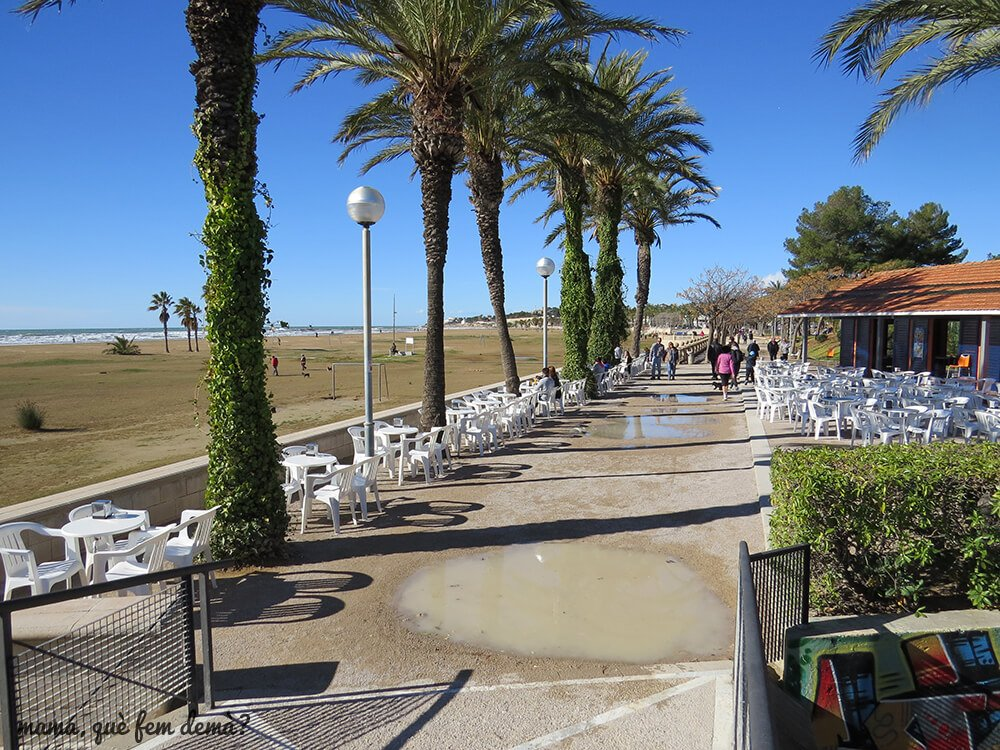 parc_ribes_roges10