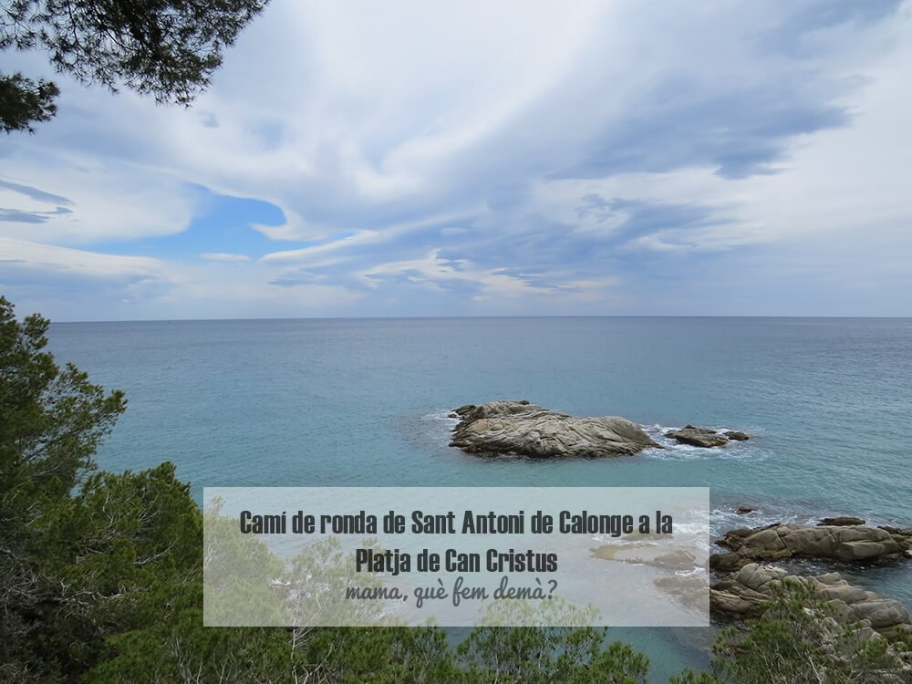 Caní de ronda Sant Antoni de Calonge