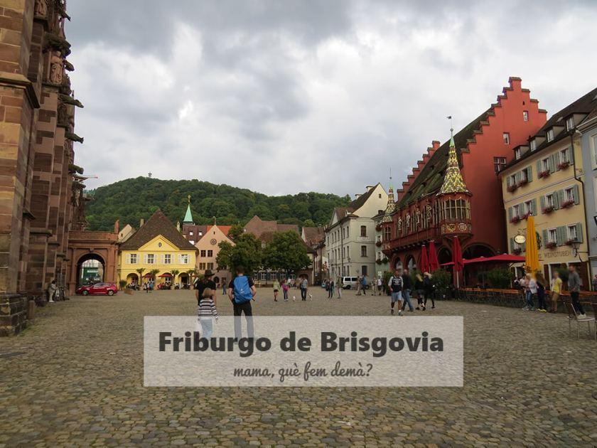 plaza de la catedral de Friburgo de Brisgovia