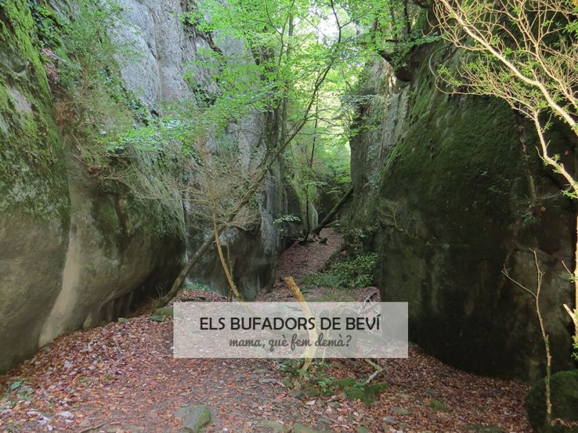 Excursión als Bufadors de Beví