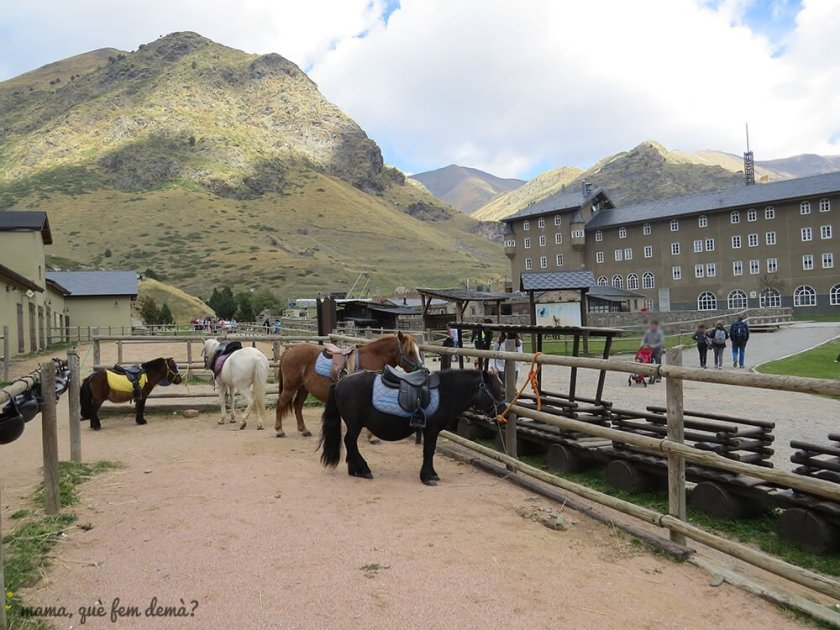 Granja y ponis en la Vall de Núria