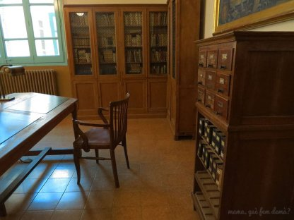 Catálogo de fichas de la biblioteca de la Colonia Vidal.