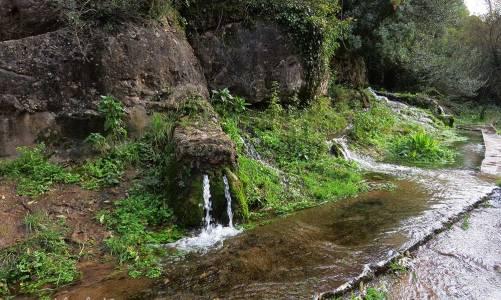 Excursión a la Balma de l'Andaló y las Fonts de Rellinars
