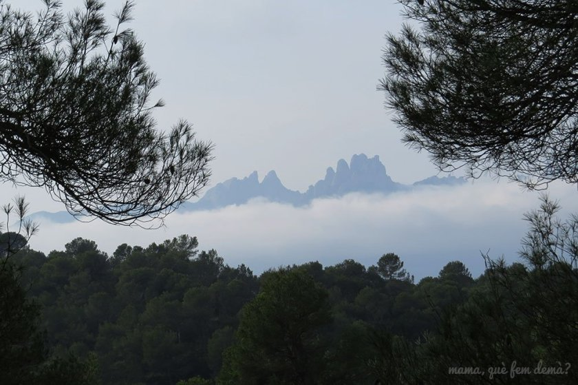 Montserrat desde Rellinars