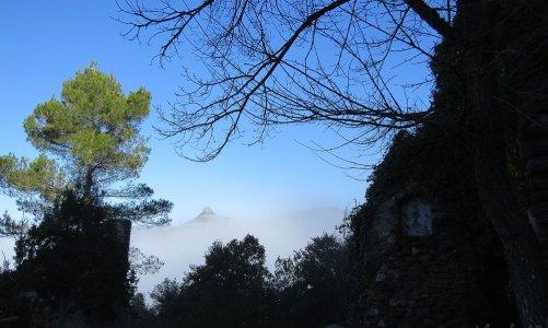 Excursión a la font de la Portella, Parc Natural de Sant Llorenç del Munt i l'Obac