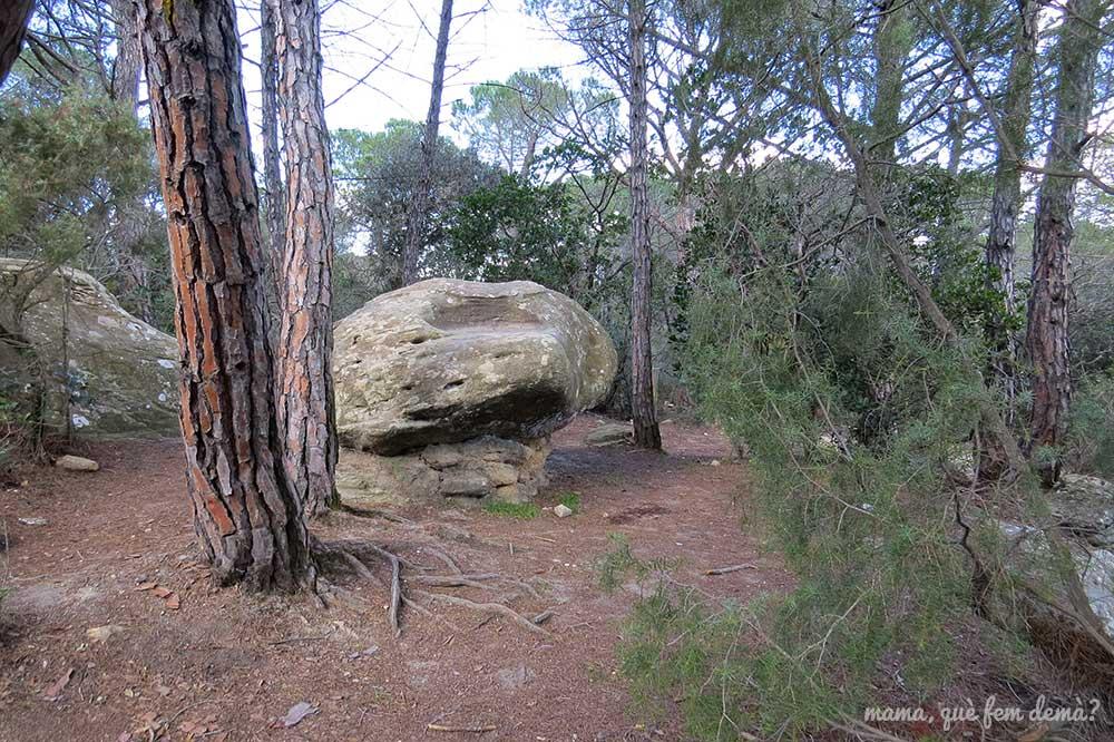 ruta prehistórica la roca del vallès