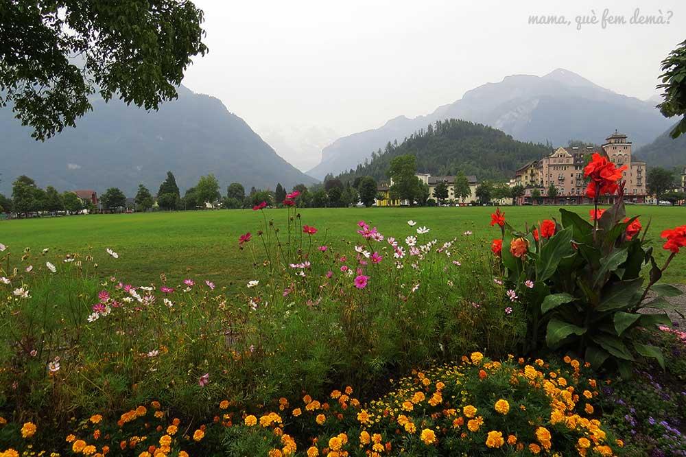 parque Höhematte de Interlaken