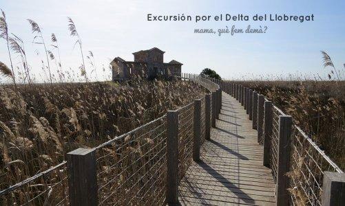 Excursión por el Delta del Llobregat: Carabineros y Semáforo