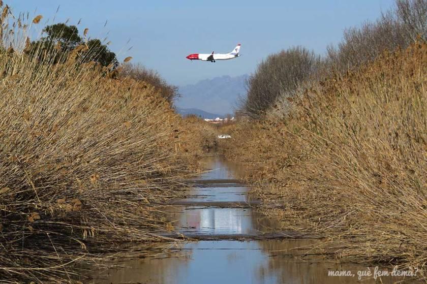 Avión sobrevolando la ruta por la excursión de los espais del riu del delta de llobregat en el prat de llobregat