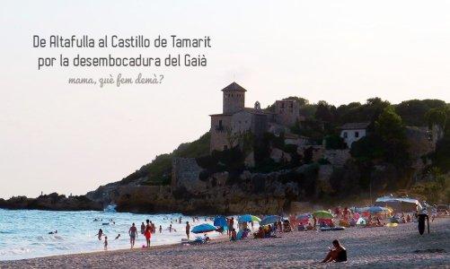 Excursión por la Costa Dorada: desembocadura del Gaià hasta Tamarit