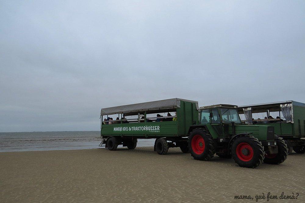 Tractorbus verde en el banco de arena de Mando