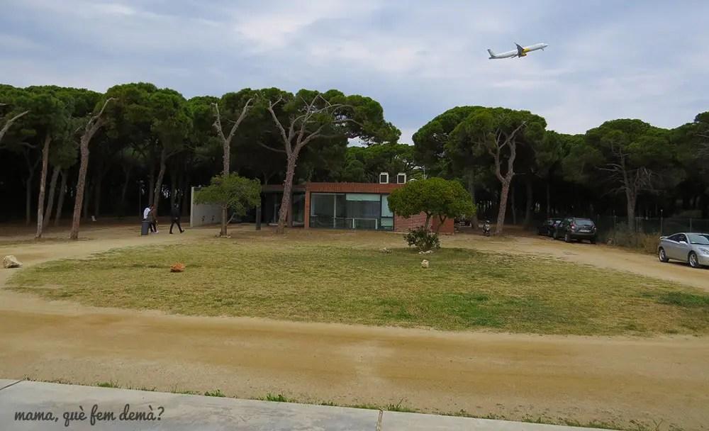 avión despegando en el CRAM