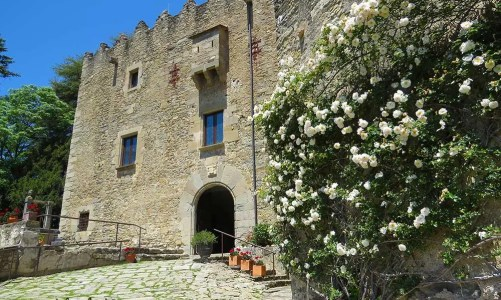 Visita familiar al Castell de Montesquiu