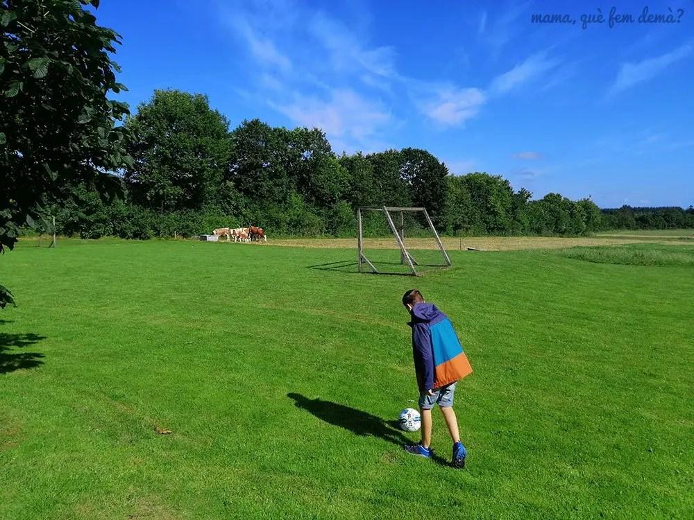 Pista de fútbol de los apartamentos Fitting Landsbyferie en Vorbasse