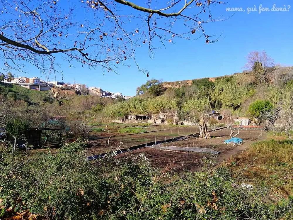 huertos del río Ripoll