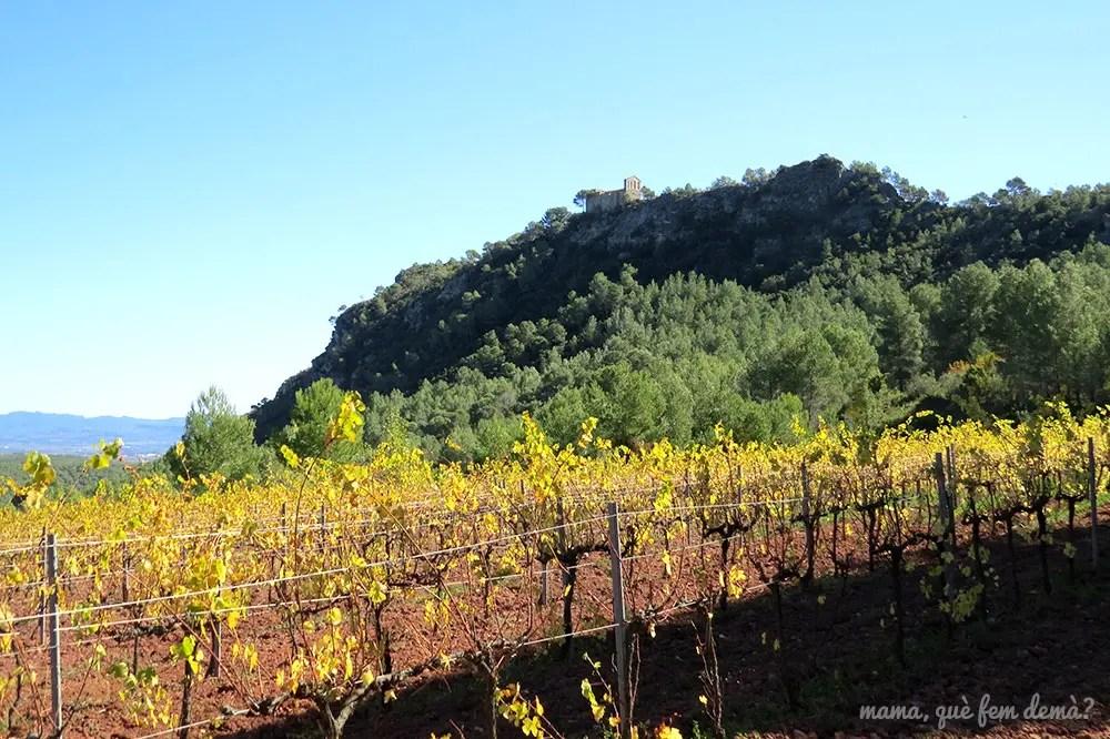 Santuari del Foix en lo alto del cerro con viñedos a sus pies
