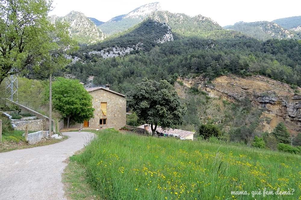 """Camino que va hacia la font de Cal Patzí en la ruta """"Un tomb per la Nou"""""""