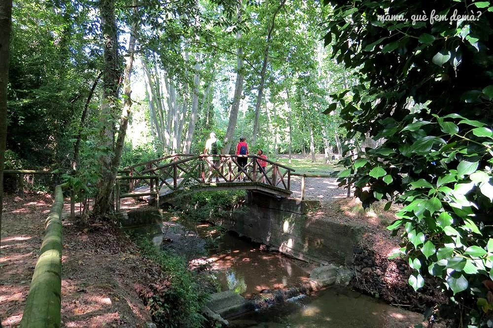 Puente de madera del Parc del Reguissol de Santa Maria de Palautordera