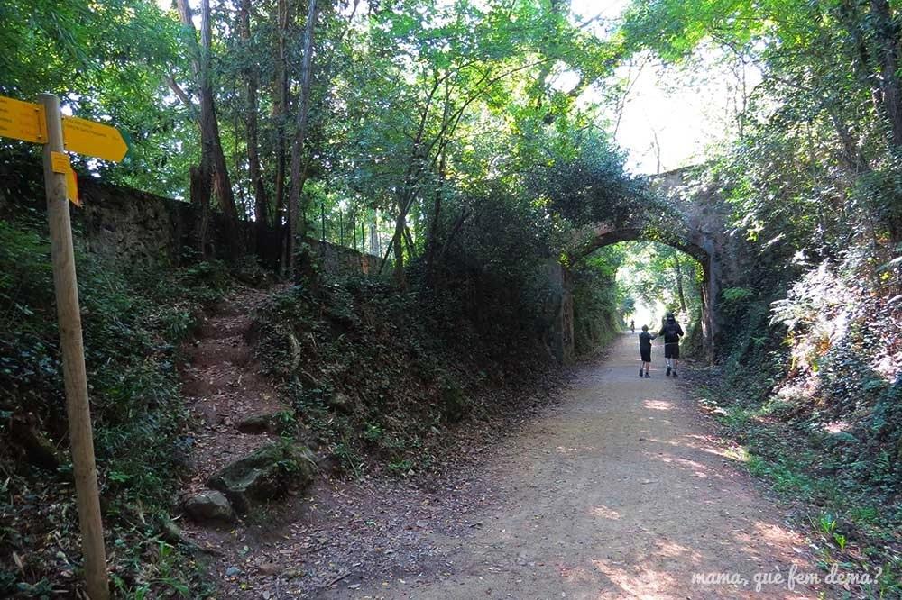 Puente de la ruta del Carrilet hacia el Gorg de Santa Margarida en les Planes d'Hostoles, Garrotxa