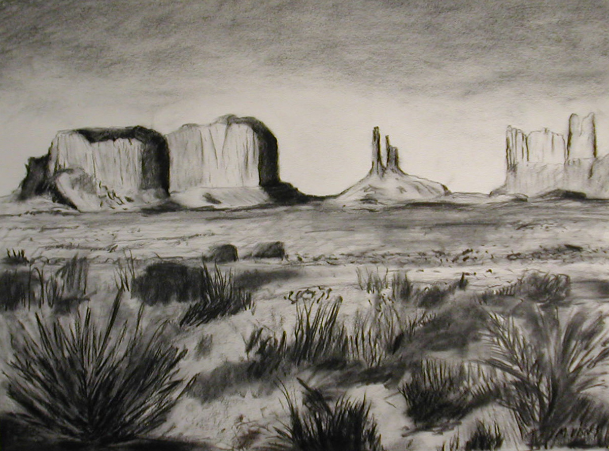 "Mitchell Visoky, Desert Horizon, Charcoal, 24""x30"",$500"
