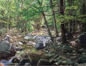 "Jim Maciel, A Maine Stream, Watercolor, 24""x30"", $250"