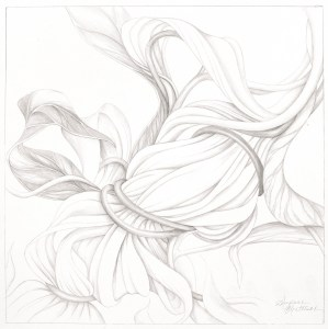 "Suzanne Montresor, Solitary Bloom, Graphite on paper, 20""x20"", $600"