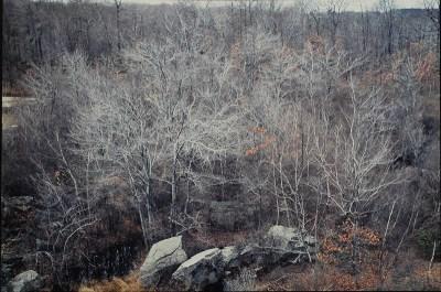 """Ellen Valle, The Quarry, Photograph, 16""""x20"""",$400"""