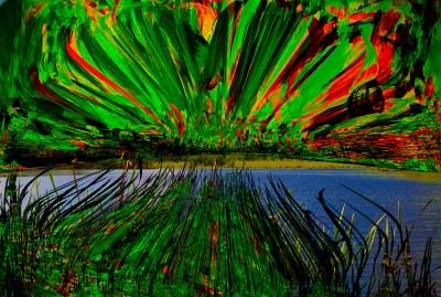 "H. David Stein, Across the Swamp, Phantasmagorical Photograph, 18""x24"" matted, $325"