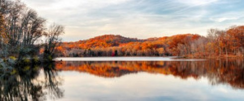 radnor-lake